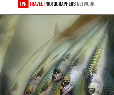 Pm22 in 40 Amazing Online Photography Magazines