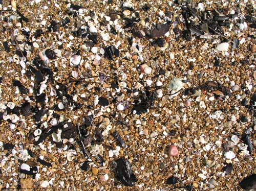 Soothing Beach Pebble Texture