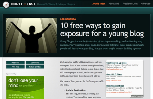 Northxeast in 45 Excellent Blog Designs